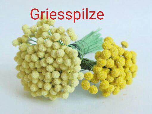 Griesspilze